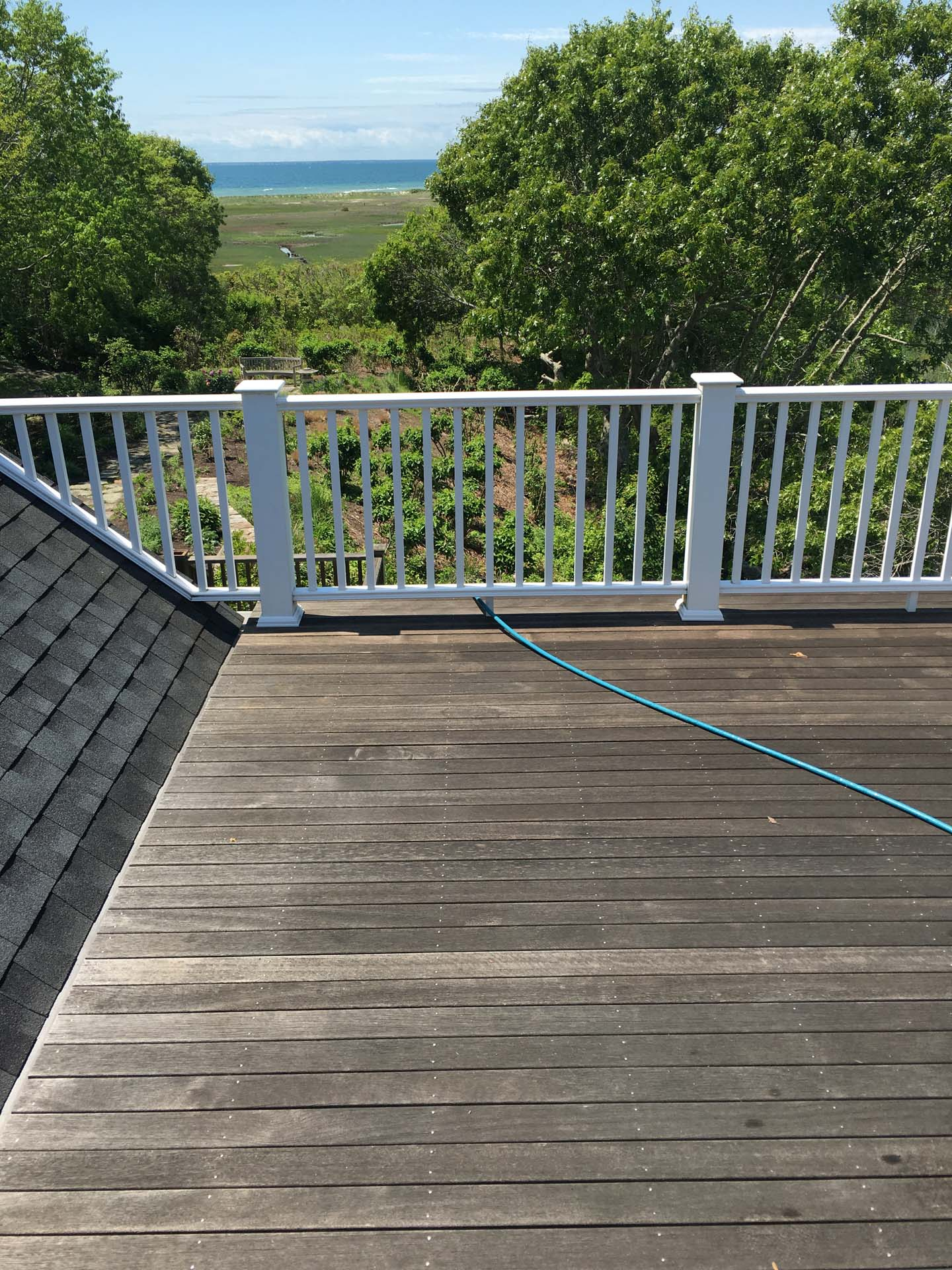uncleaned deck